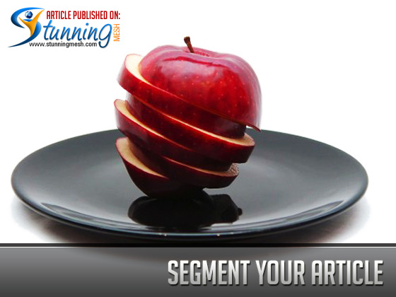 Quality Content - Segment your article