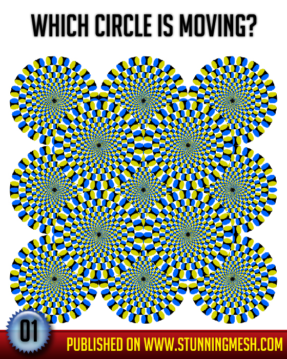 Stunningmesh - Brain Tester - Optical Illusion