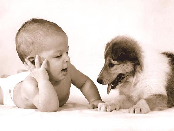 Stunningmesh - Babies Wallpaper