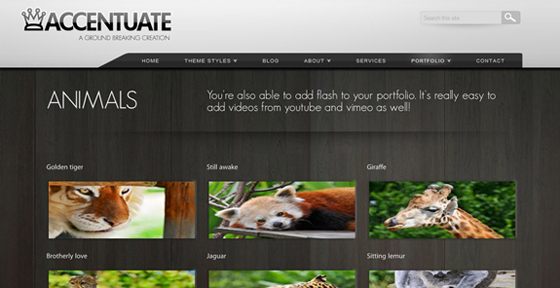 Accentuate Premium WordPress 3 Theme [ThemeForest]
