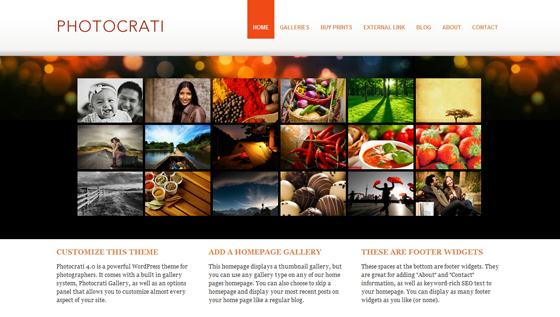 Photocrati SuperTheme [Photocrati]