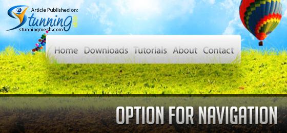 Option for Navigation in Designing