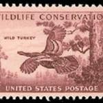 stunningmesh-postage-stamps (47)