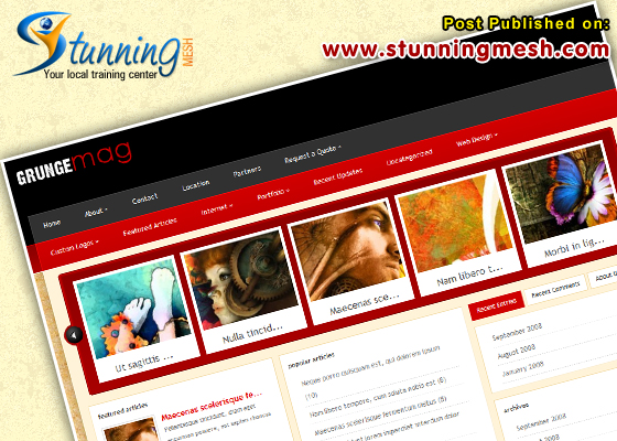 Grunge mag by ElegantTheme Premium WordPress Themes