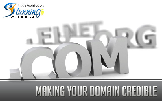 Making Your Domain Credible in Website's Search Results