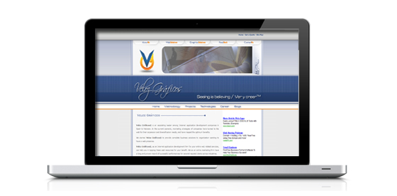 Website Designs: Sensibility and cleanness
