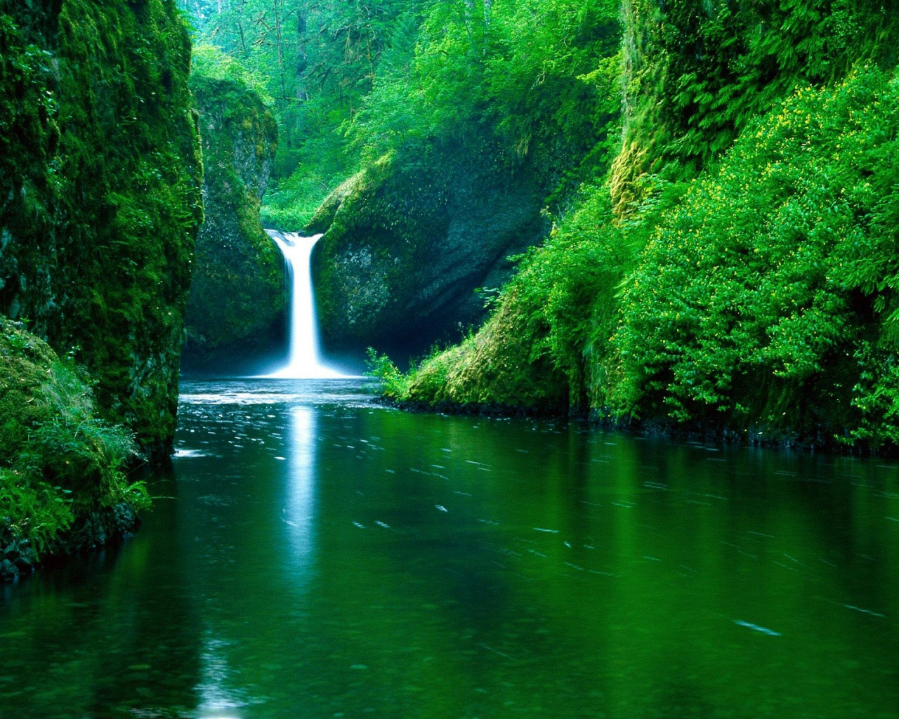 Green Nature Eco Friendly Wallpapers Stunningmesh