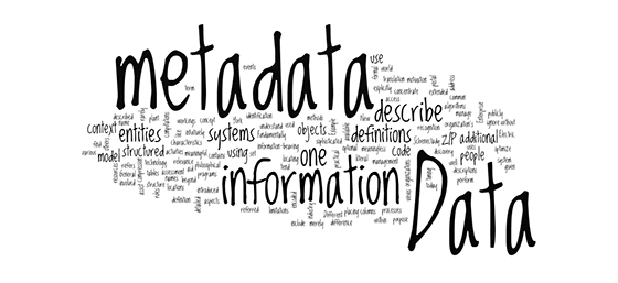 Include Extensive Metadata
