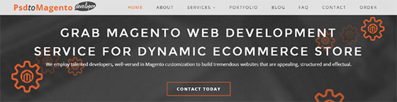 PSDtoMagentoDeveloper - Web Development Companies