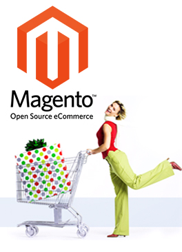 How to Generate Reports in Magento eCommerce Store?