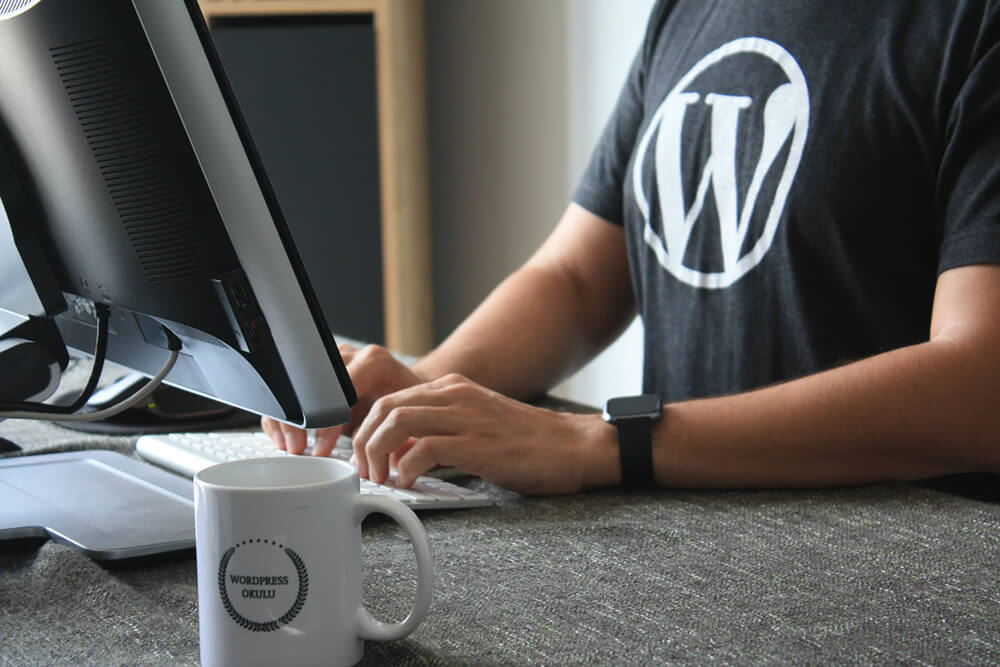 Custom Themes - Man wearing T-Shirt with WordPress Logo