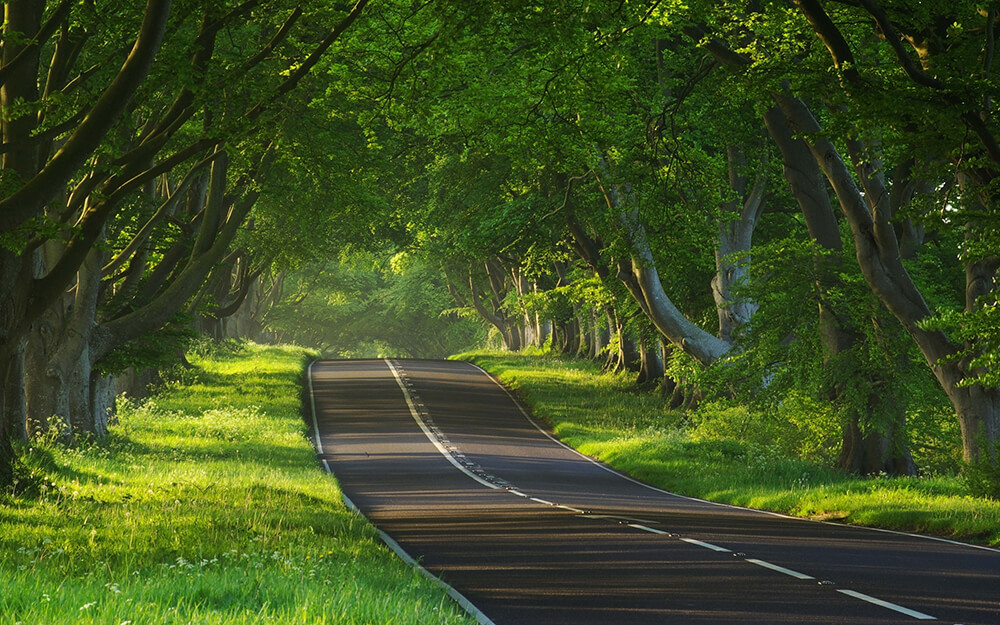 Awesome Roads and Paths Making the Art - Wallpapers