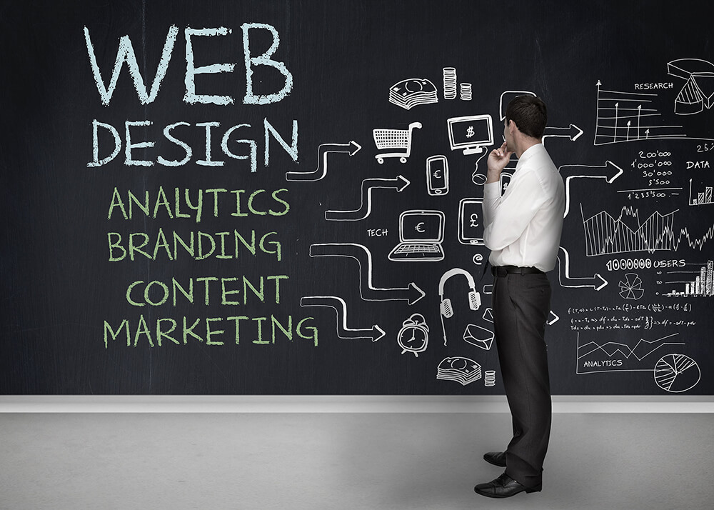 Hiring a Professional Web Design Agency On Sunshine Coast