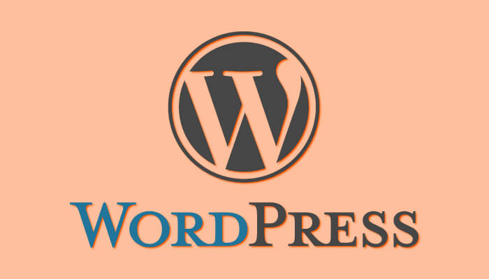 Plug-Ins Provide Backup to the WordPress